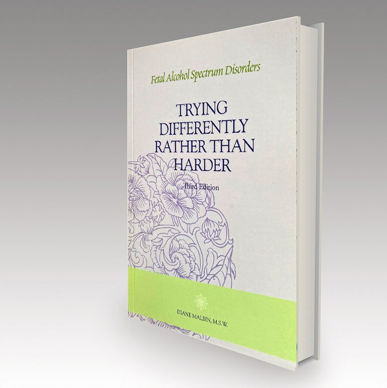 Try Differently Rather Than Harder book cover